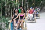 Jungle Taxi
